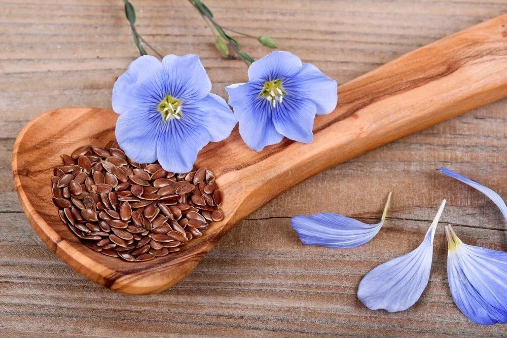 Семена льна как помощь при лечении запоров