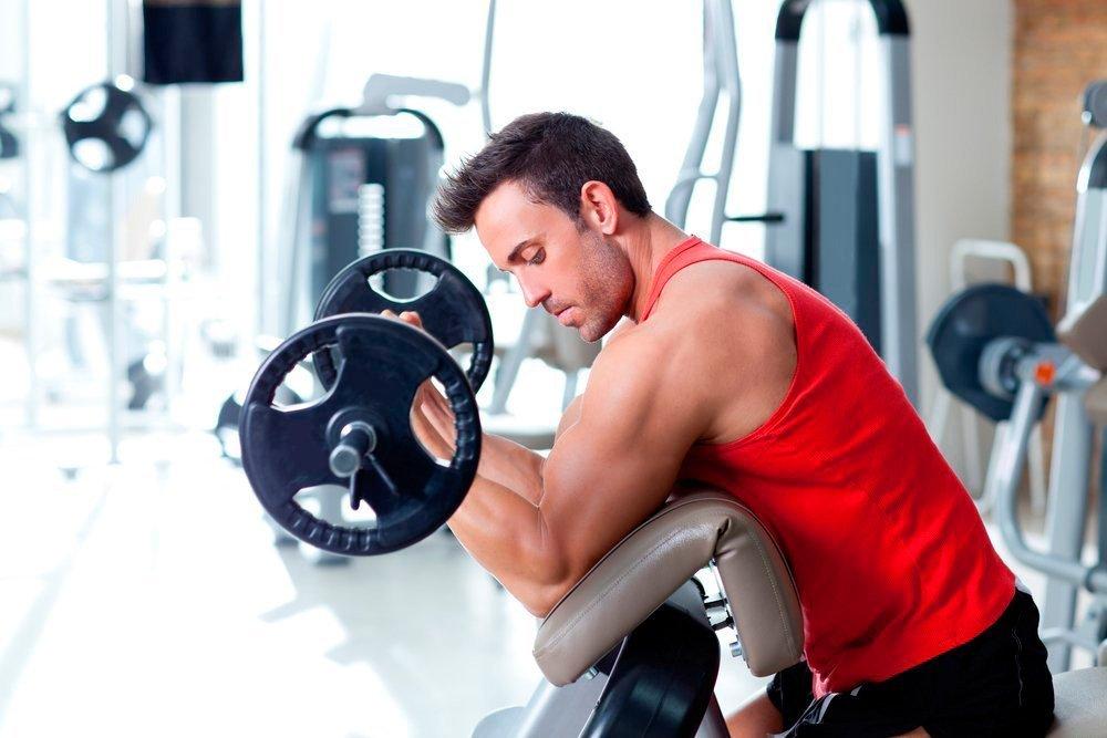 Основы силового фитнеса для начинающих