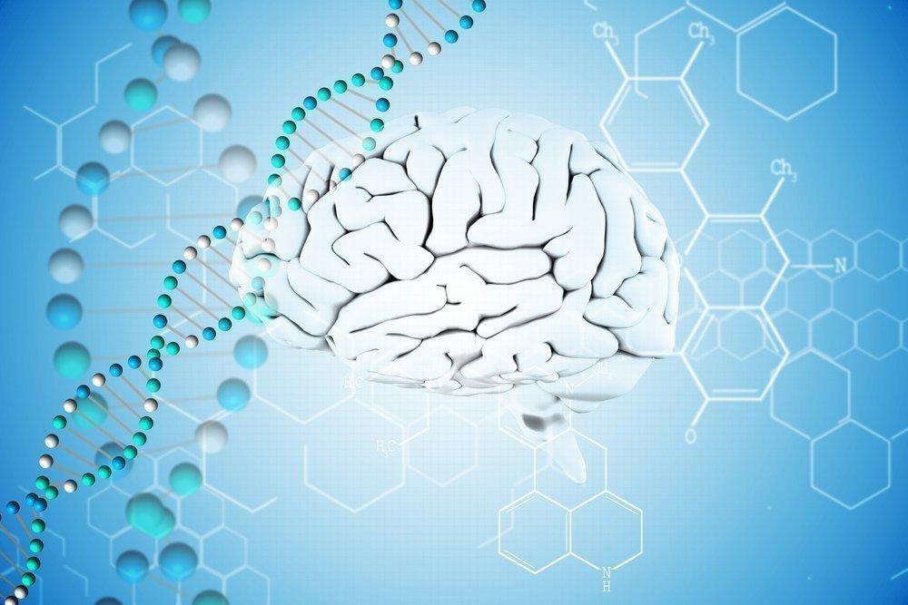 Дисциркуляторная энцефалопатия: особое поражение мозга