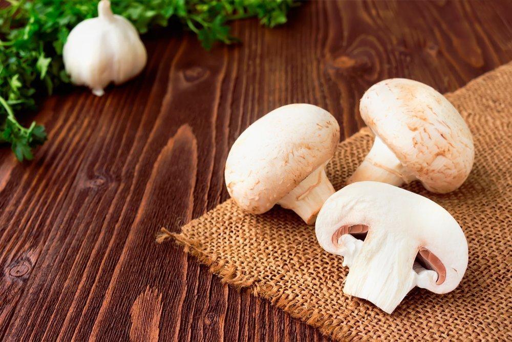 Опасные свойства грибов