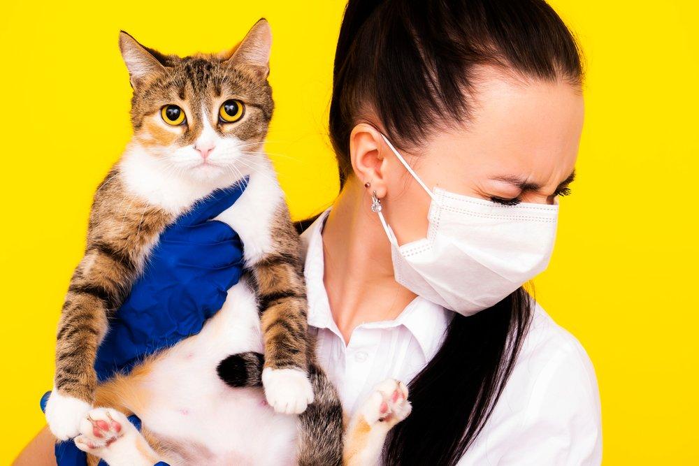 Генно-инженерные кошки и несбывшиеся надежды