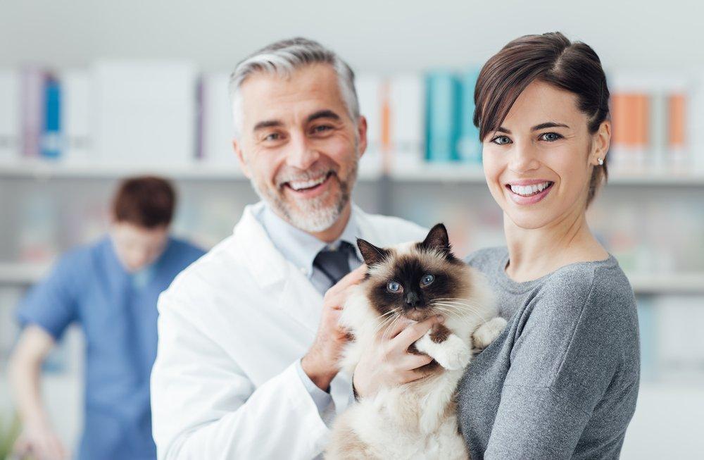 АСД для людей и для животных