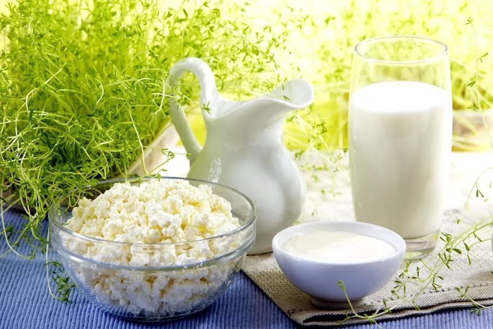 1. Молочные продукты питания