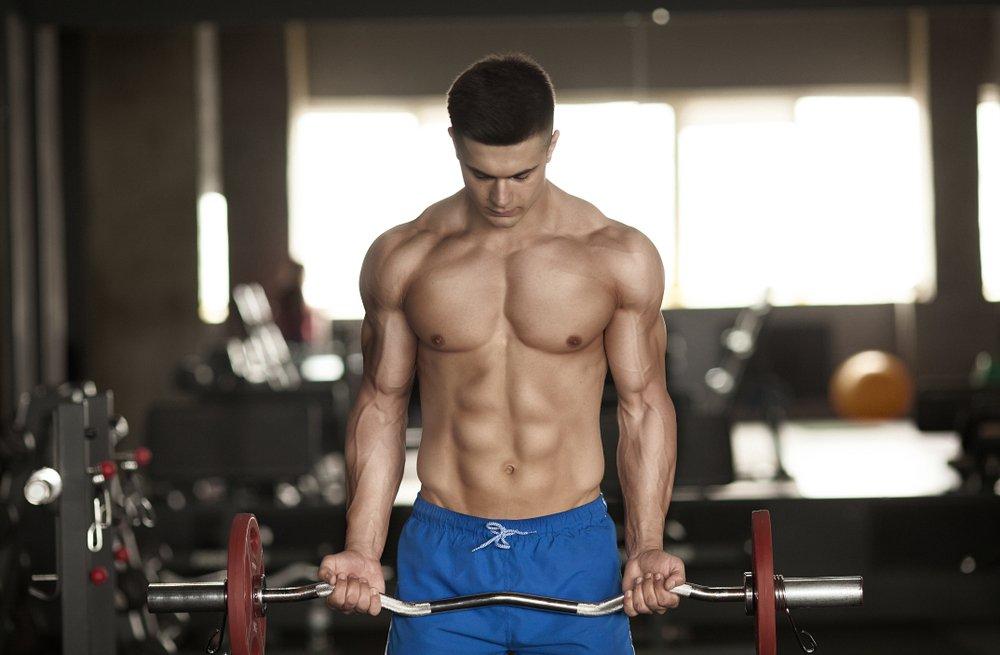 Фитнес-программа для новичков: все тело за одну тренировку