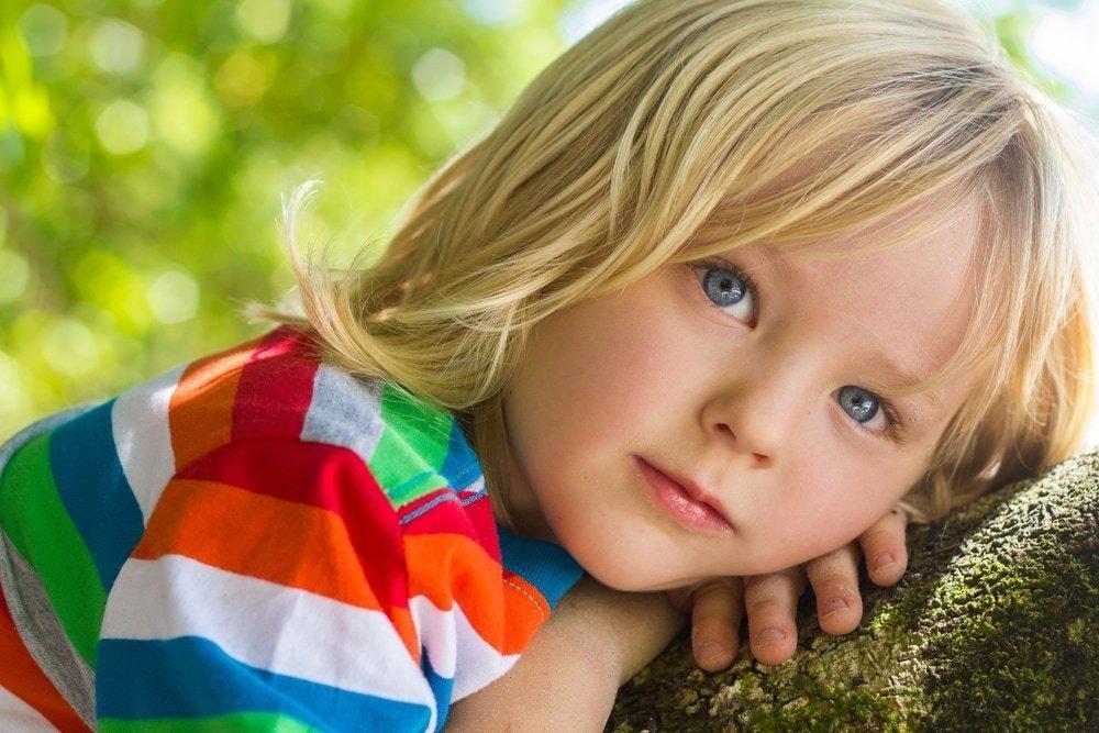 Привычки и особенности развития ребенка с флегматичным типом характера