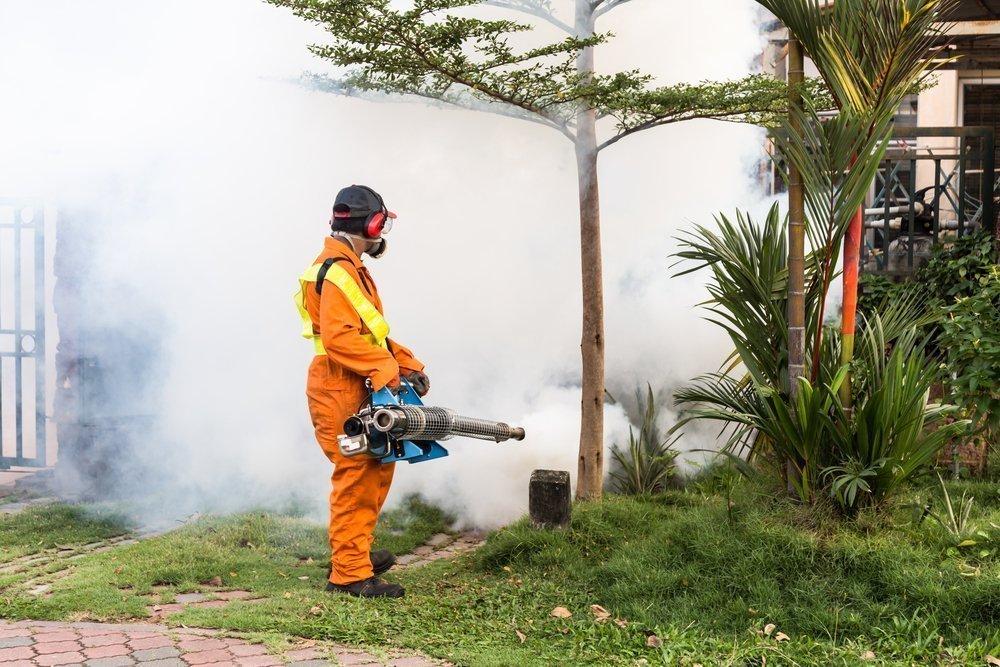 Комар — переносчик различных вирусов, паразитов и бактерий