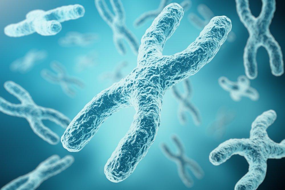 Хромосомные болезни — генетическая поломка