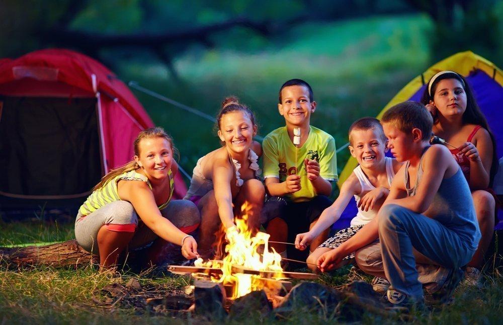 Виды учебных программ развития ребенка на каникулах
