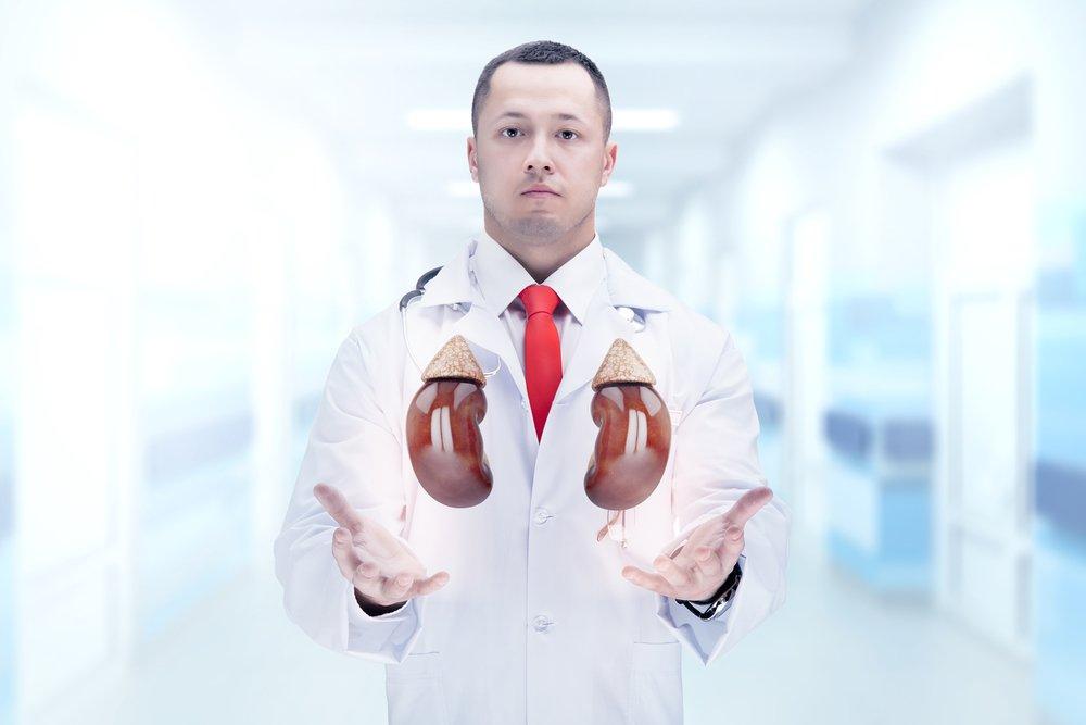Почему возникает пиелонефрит: инфекция, цистит