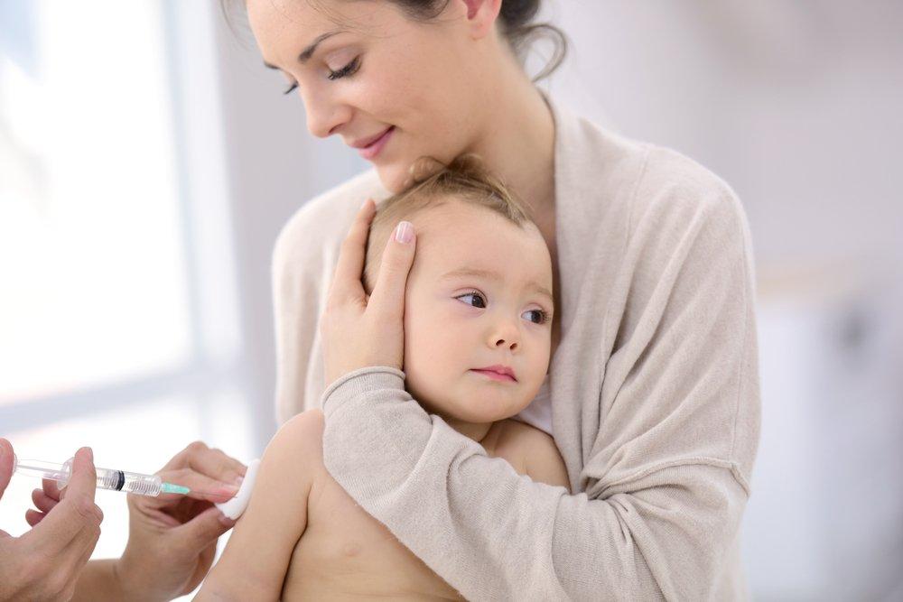 Когда проводятся прививки?