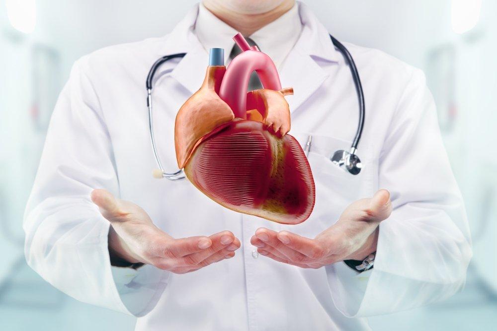 Причины болезни сердца кардиомиопатии