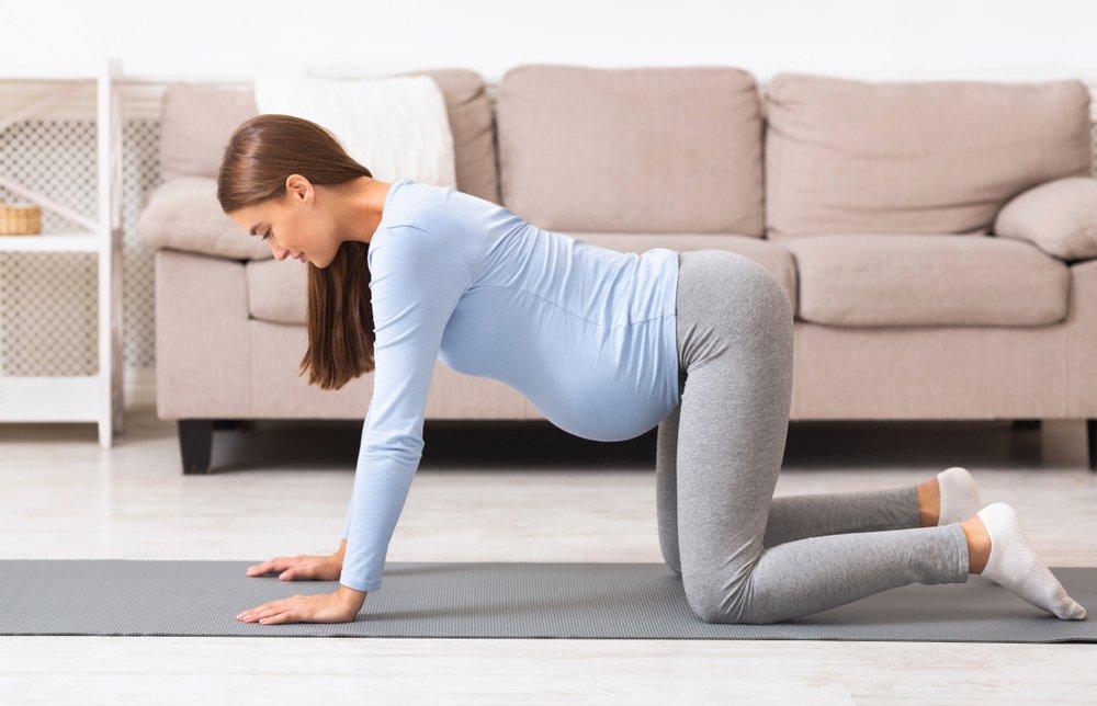 Как, когда, сколько: выполняем упражнение правильно!