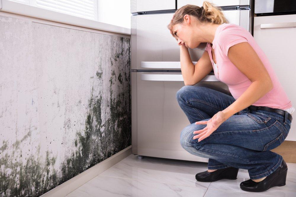 Коварный аллерген: причины появления плесени