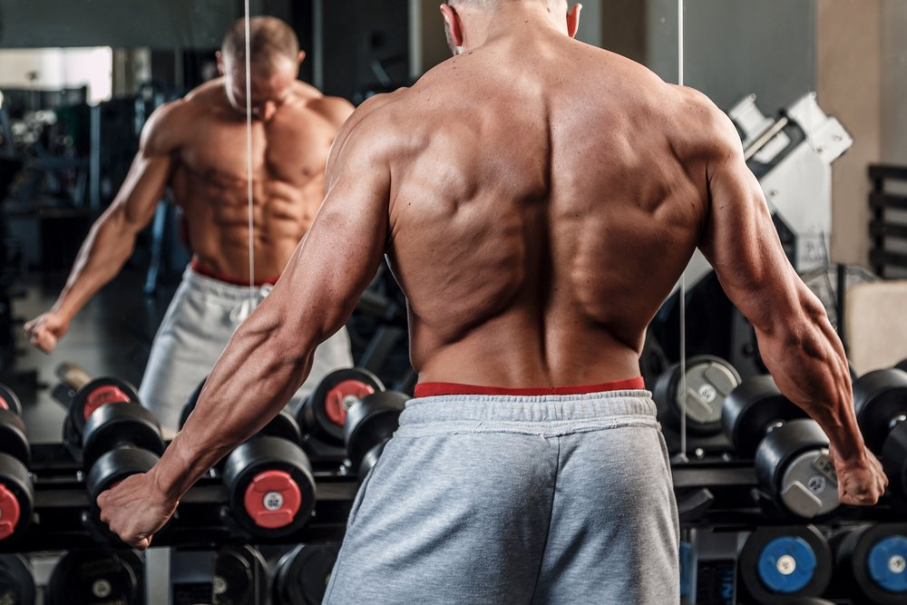 Комплекс изолирующих упражнений для разных мышц спины