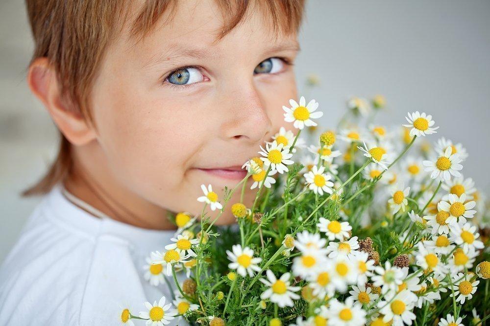 Пыльца растений — причина поллиноза у детей