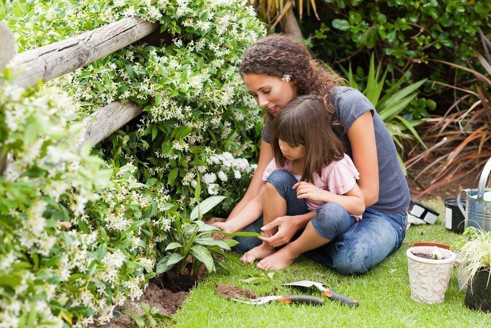 Развитие ребенка на природе
