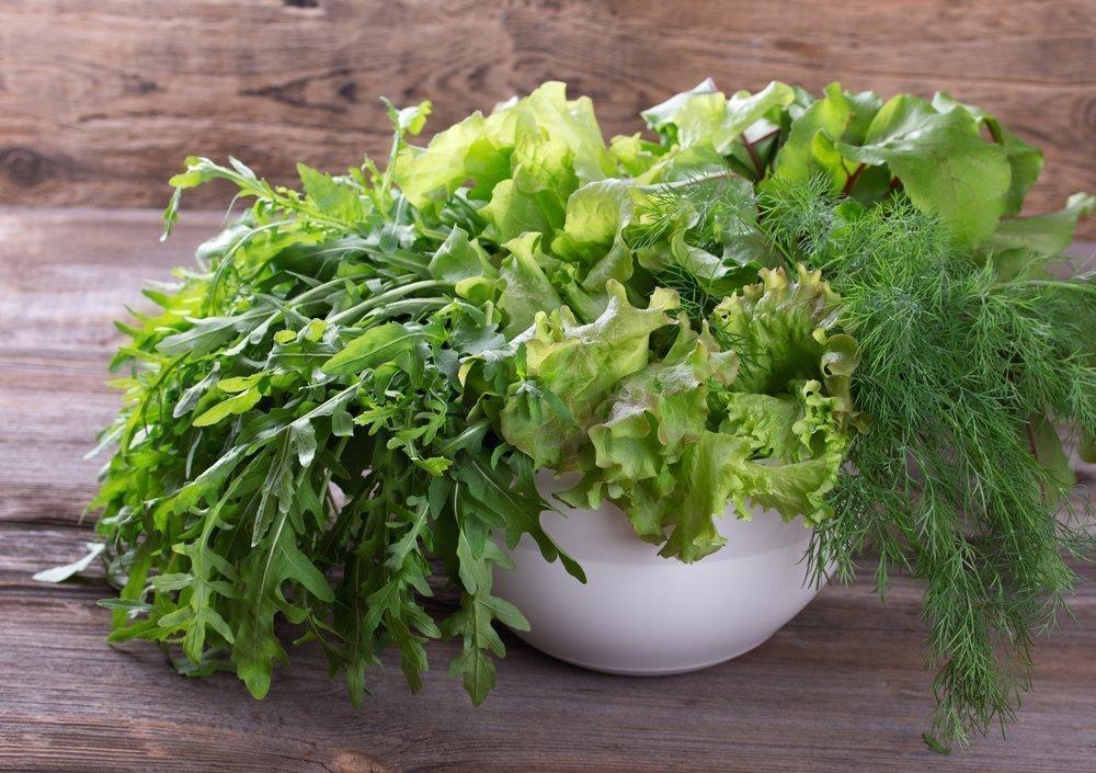 Молодая зелень для майской диеты