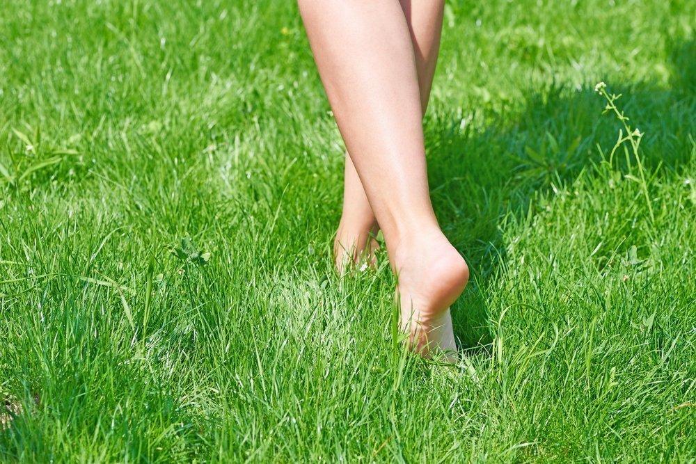 Прогулка по траве