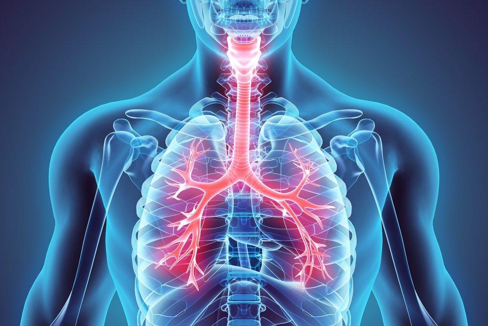 Диагностика бронхоэктатической болезни
