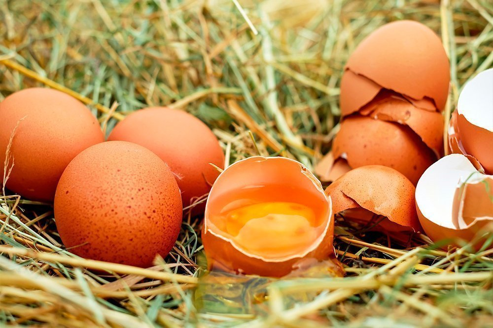 Основные причины исключения куриных яиц из рациона питания