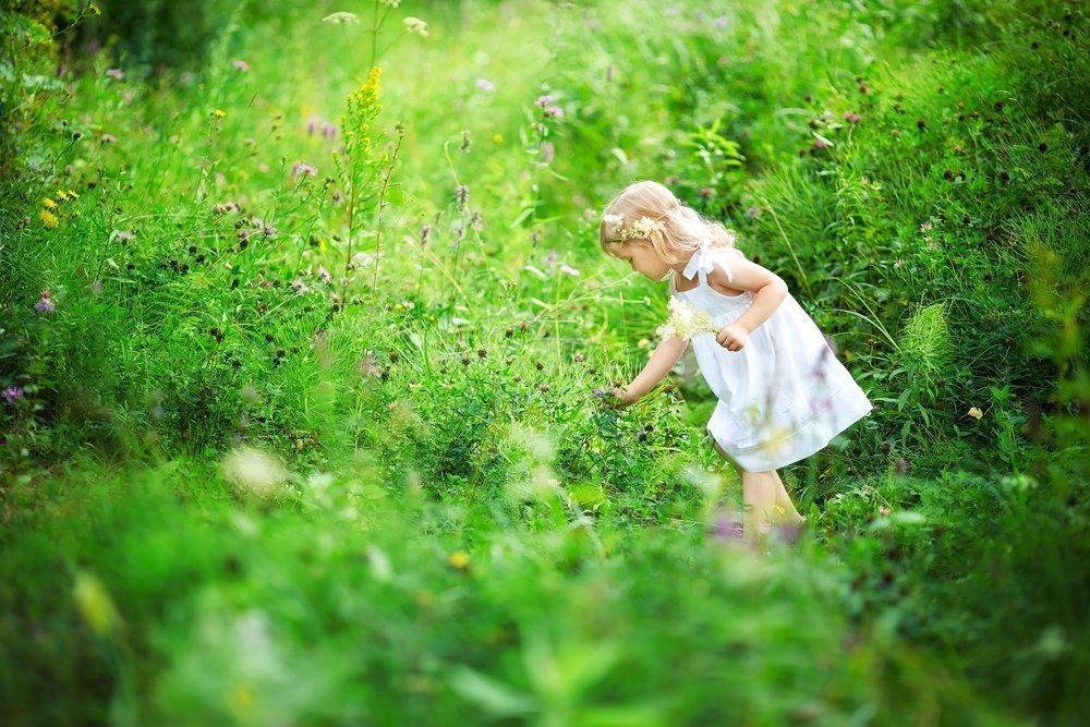 Дети и «купальский сбор трав»