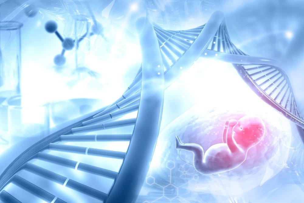 ДНК, неповторимая и уникальная