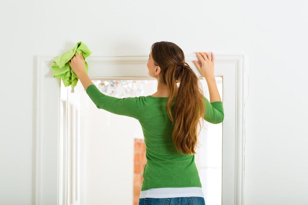Профилактические меры по борьбе с клещами домашней пыли