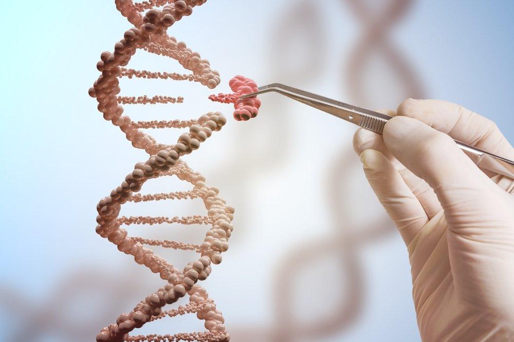 Генная инженерия: успехи и риски