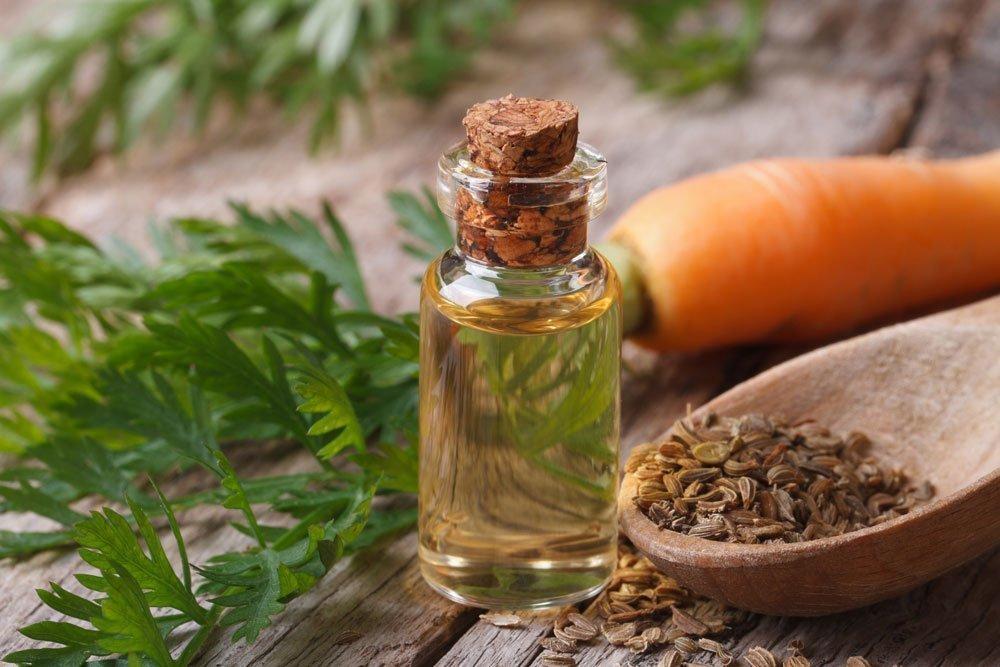 Сила семян для здоровья и красоты
