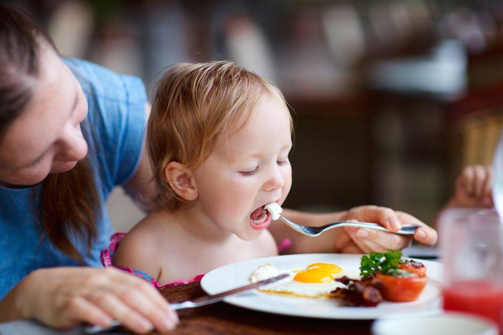 О правильном питании — белках, жирах, углеводах