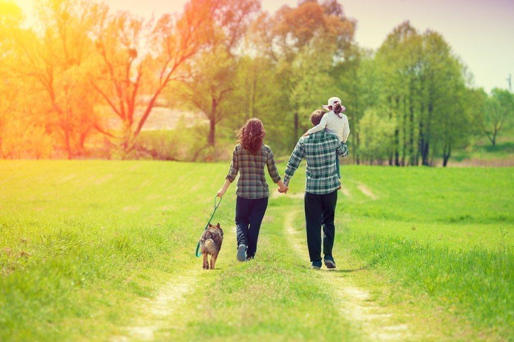 Польза пешей прогулки