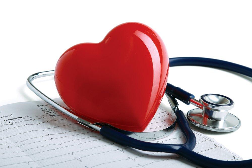 Сердце медицинское картинки
