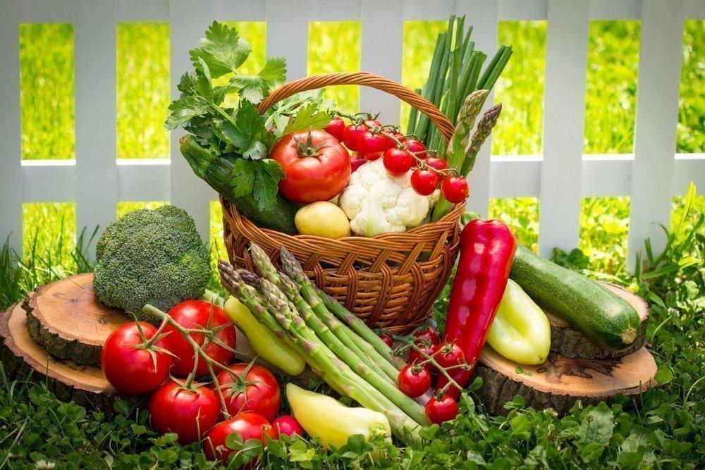 Роль овощей в питании человека Виды овощей их обработка и хранения  Свежие овощи источники клетчатки
