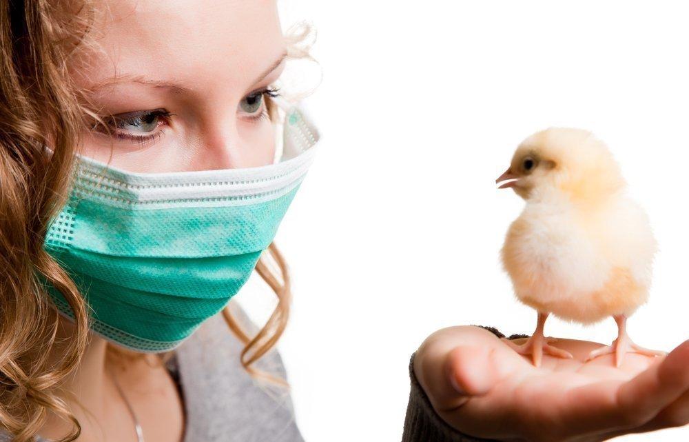Секрет заразности птичьего гриппа
