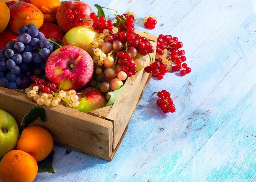 Влияние на здоровье детей включения фруктов в основное питание