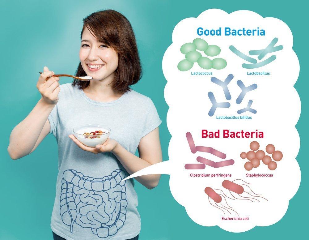 Проблемы питания и микрофлора