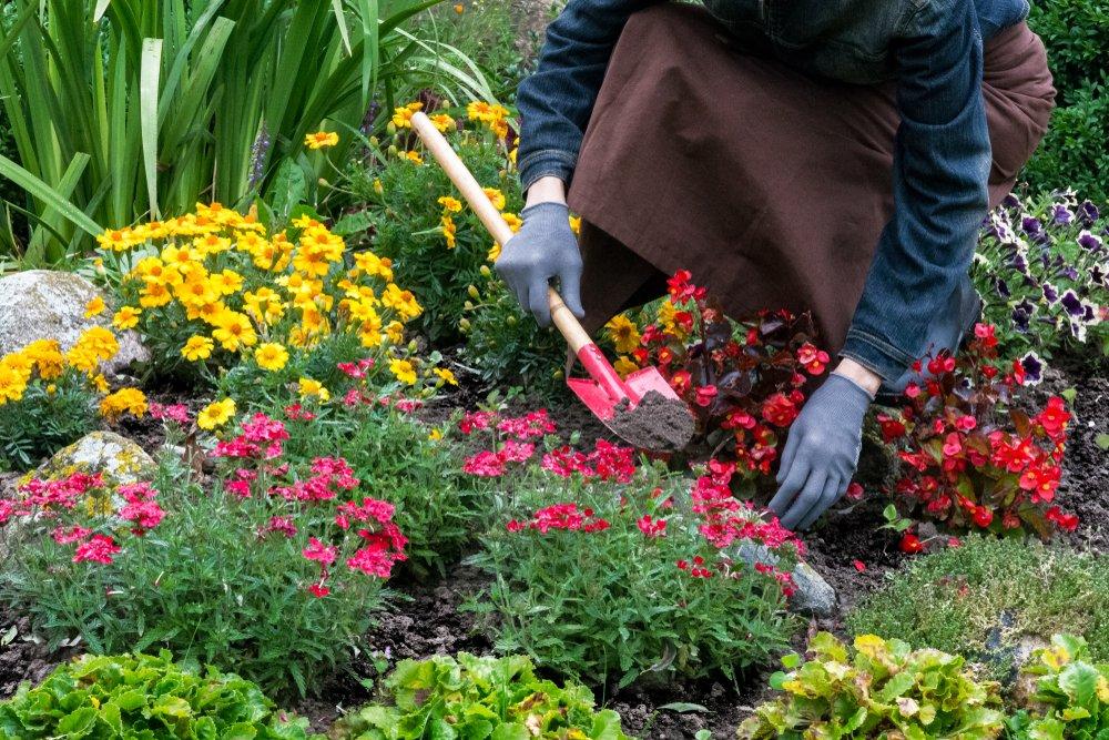 3. Полюбите садоводство