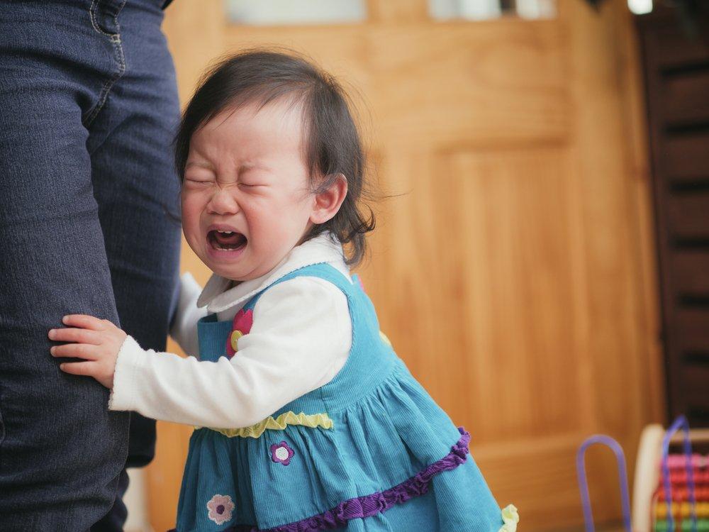 В чем суть истерик и капризов детей?