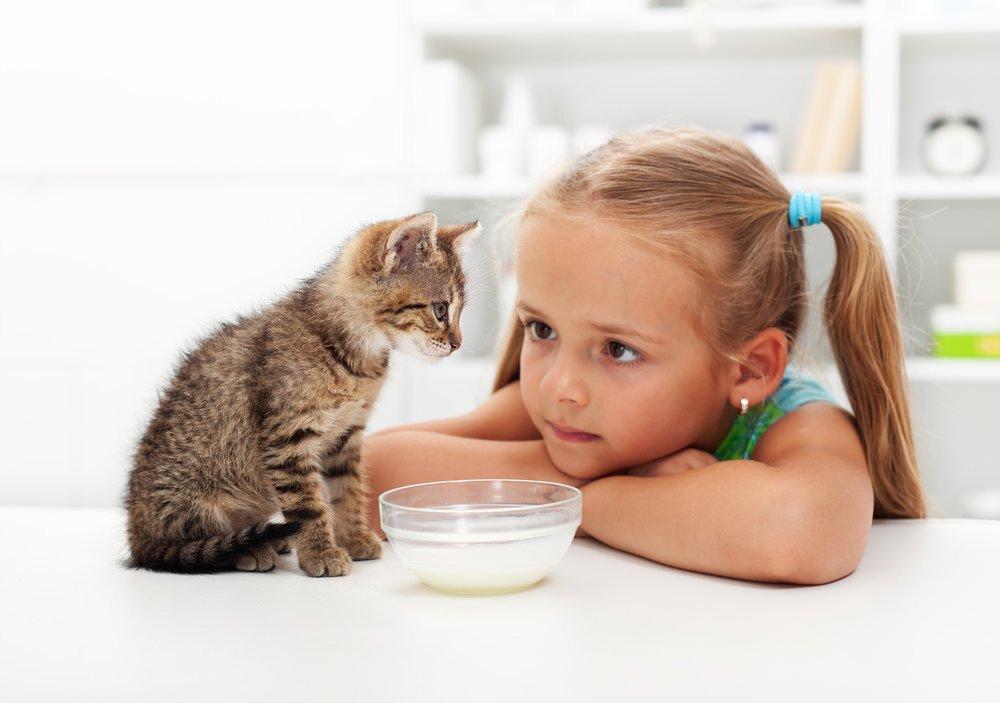 Развитие ребенка при уходе за своим домашним питомцем: советы психологов