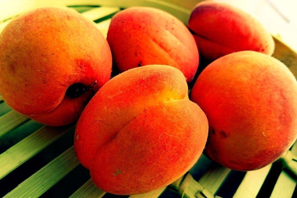 Что в составе абрикосового масла?