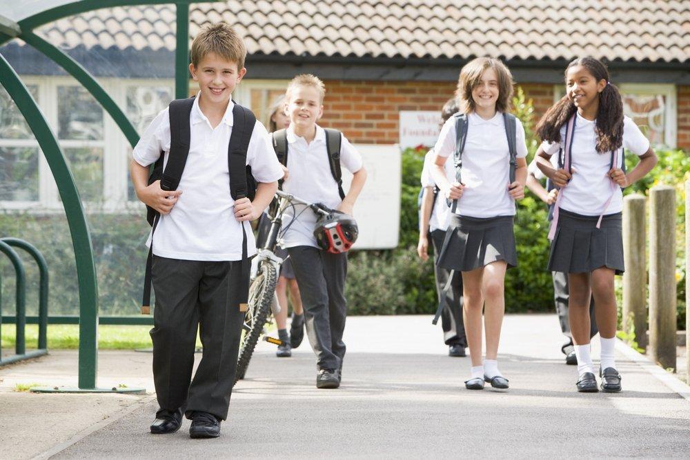 Особенности системы зарубежного школьного образования