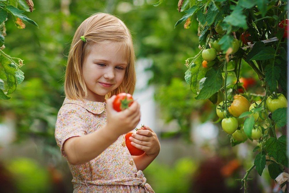 Отказ детей от овощей и фруктов: актуальность проблемы