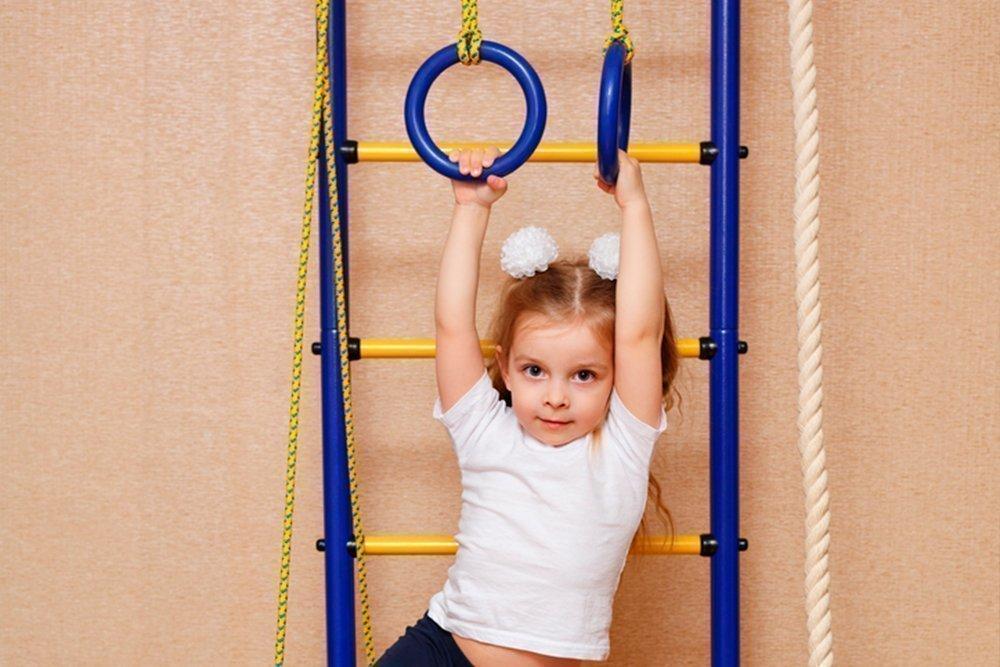 Упражнения на гимнастической лестнице для школьников