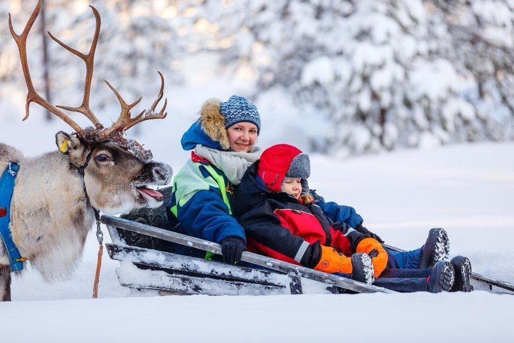 Новогоднее развлечение для малышей: катание на оленях