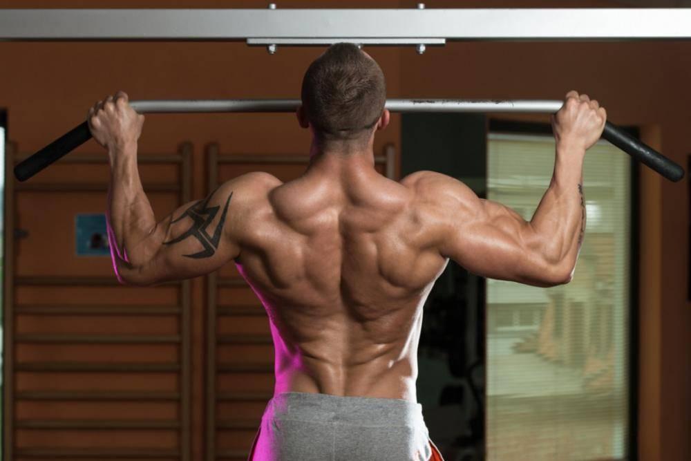 Пример эффективной силовой фитнес-тренировки для мышц спины