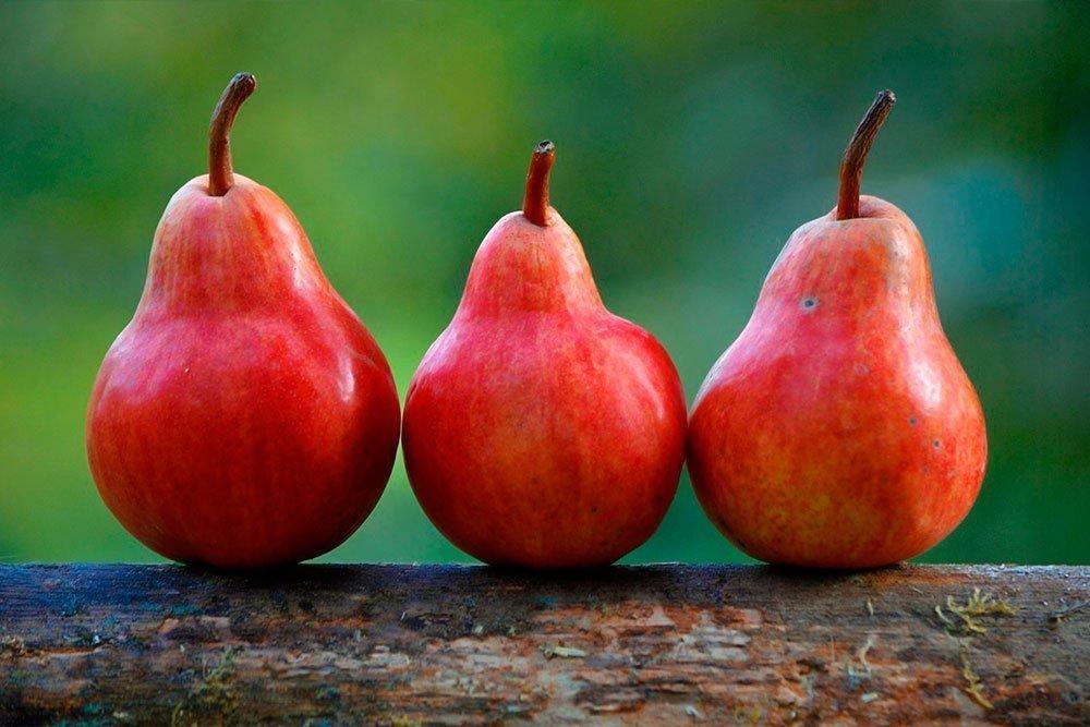 Похудение с сочным плодом