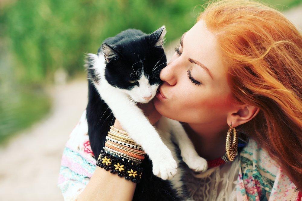 Кошачьи инфекции: степень опасности