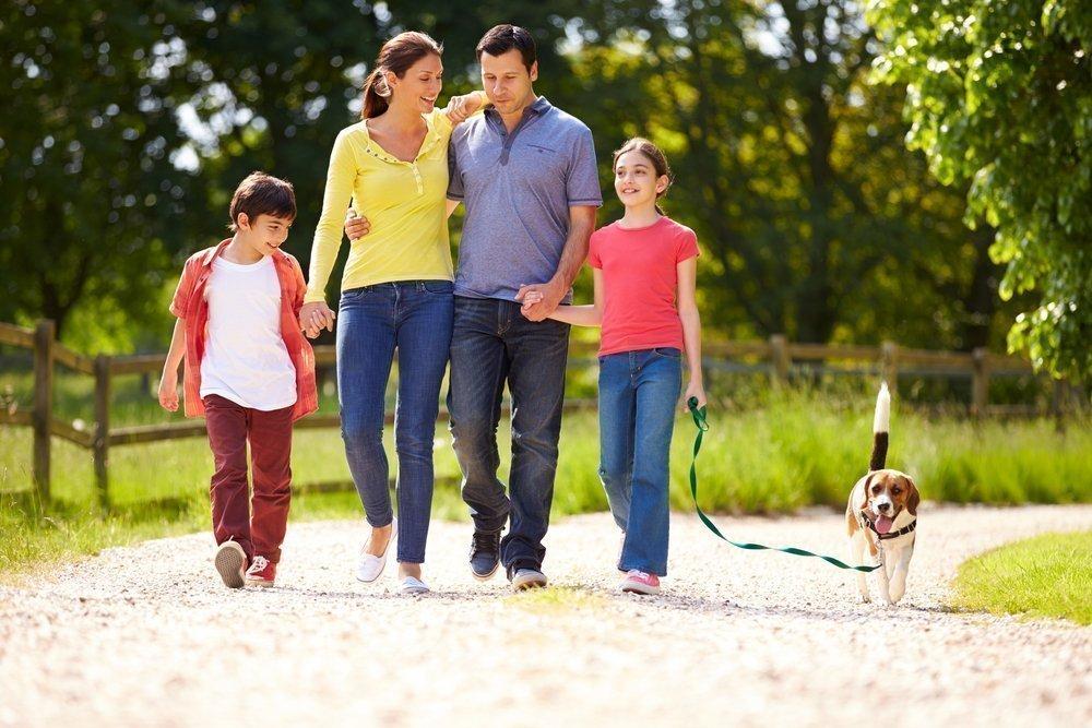Прогулка, как средство воспитания