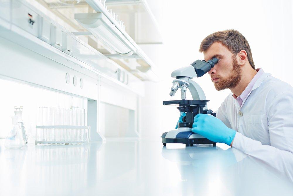 Молликуты — не вирусы и не бактерии