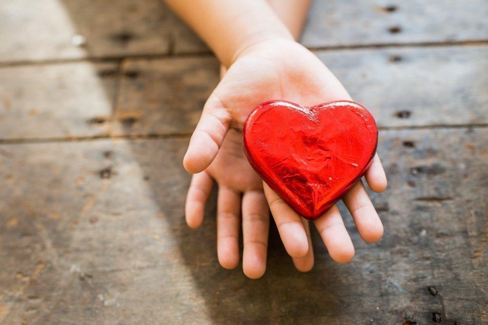 Об анатомии детского сердца
